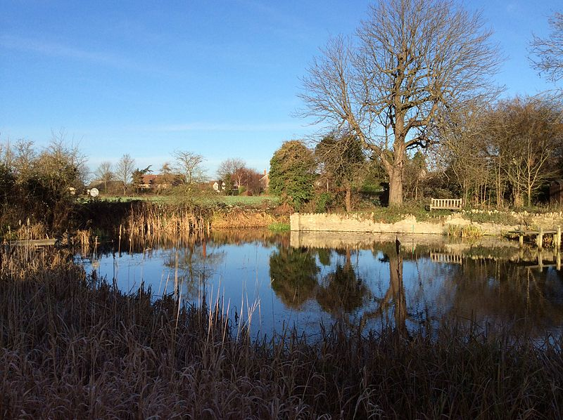 Biddenham_Village_Pond